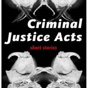 Criminal Justice Acts by John Barker
